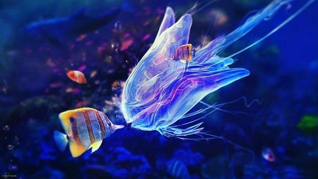 superbe-image-de-poissons-sous-l-eau
